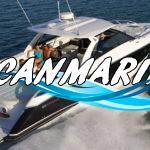 Cobalt A40 Bowrider Cruiser